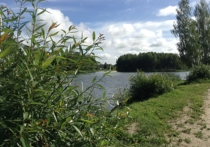 В Смоленской области продолжают тонуть люди